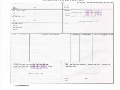 台湾海峡两岸原产地证ECFA FORM H